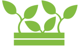 pallkrage grön